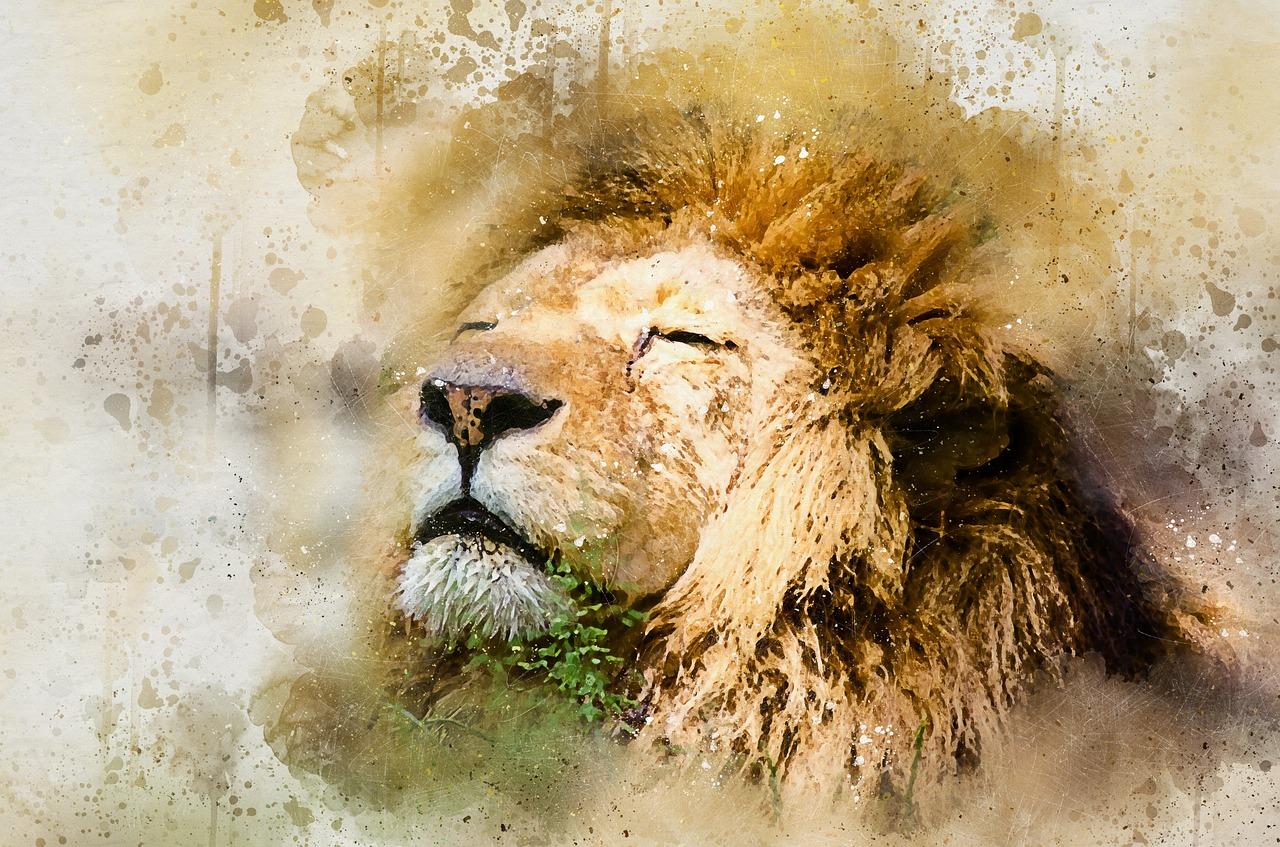 Gli insegnamenti del Re Leone: tutto coesiste grazie a un equilibrio e siamo tutti connessi nel Cerchio della Vita
